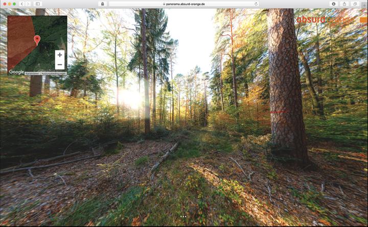 Herbstlicher Wald beim Heuberger Tor in Tübingen am Südrand des Schönbuchs